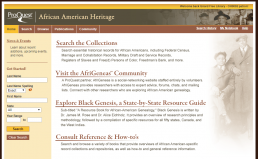 Screenshot of African American Heritage database